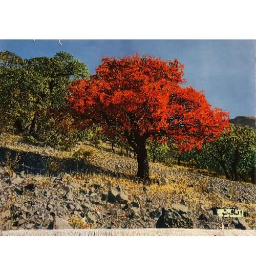 تابلوفرش  منظره پاییز