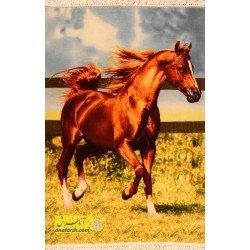 تابلو فرش اسب کد 11577